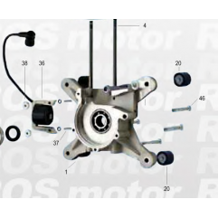 Crank and coil